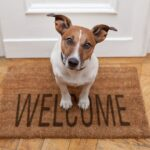 Is It Time For You To Stop Being A Door Mat In Your Business In This Way?